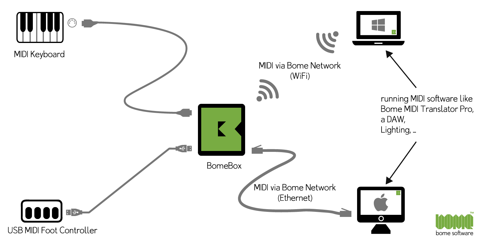 Bome Network Diagram